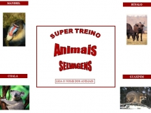 Super Treino - Animais